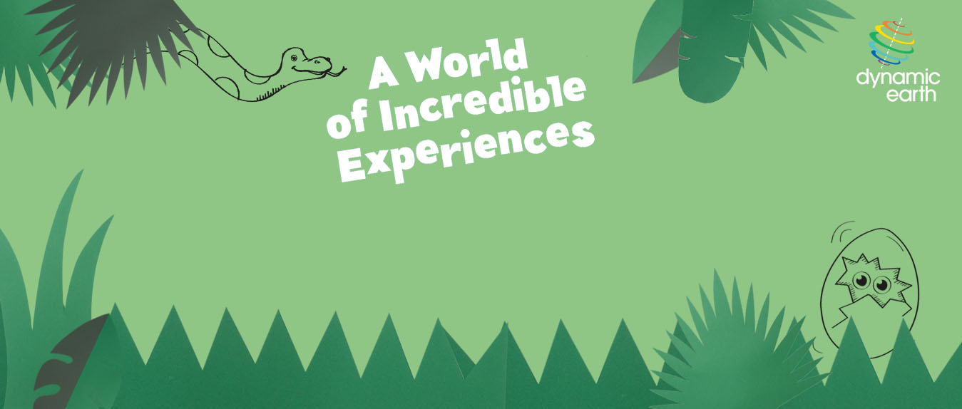 Rainforest theme banner.jpg